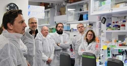 Development of colorectal cancer kit detection