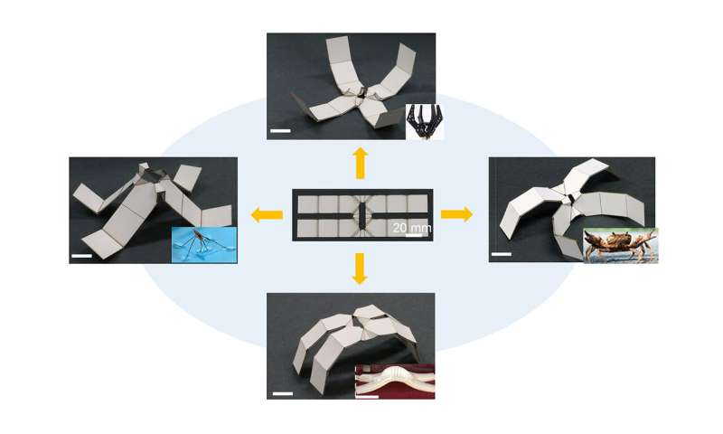 Researchers make robots from self-folding kirigami materials