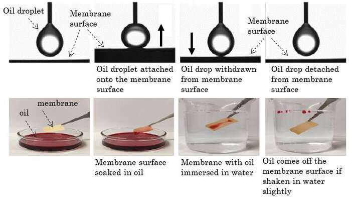 Development of ultrathin durable membrane for efficient oil and water separation