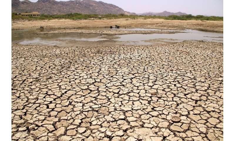 Almost half of India—an area home to more than 500 million people—is facing drought-like conditions because of deficient pre-mon