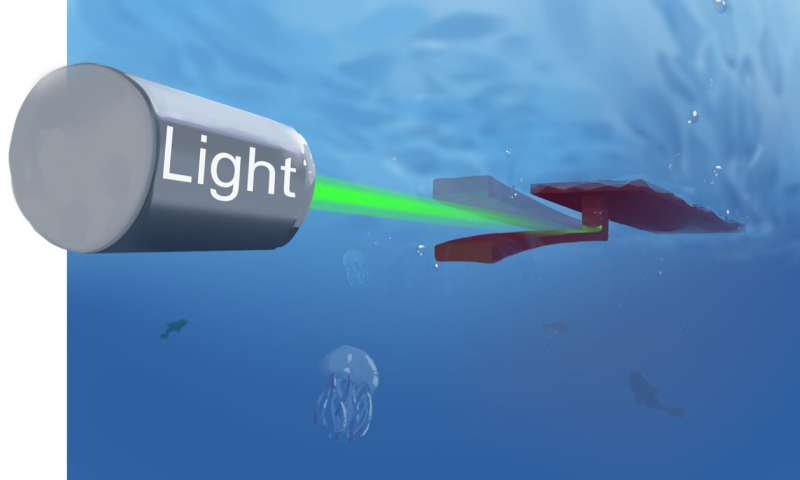 A soft phototactic swimming robot built using a self-sustained hydrogel oscillator