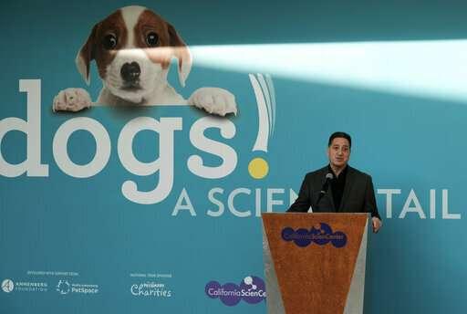 California science exhibit explains the dog-human friendship