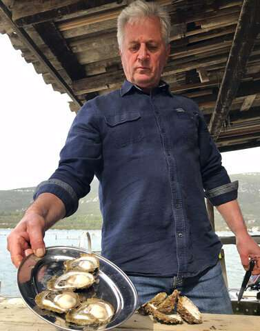 Croatia's top oyster farmers in alarm after norovirus found