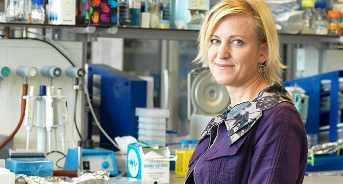 Doctors andmolecular engineers working to enlistthe immune system to fight cancer