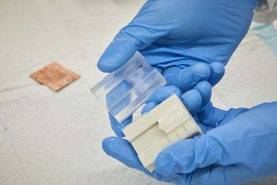 Freezing silk gets cool result in quest for cardiac patch