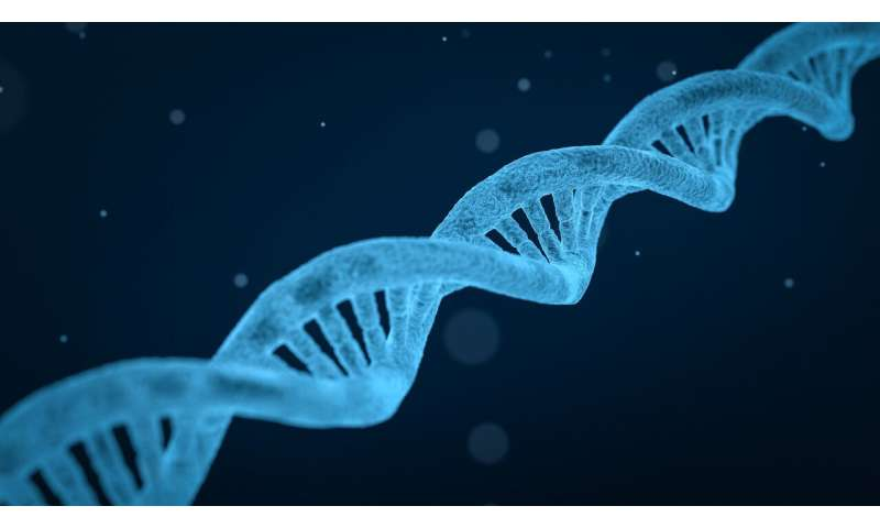 So-called junk DNA hides useful compounds