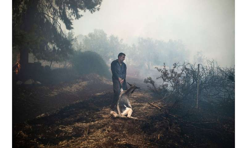Greece has been hit by a spate of wildfires since the weekend, fanned by gale-force winds and temperatures of 40 degrees Celsius