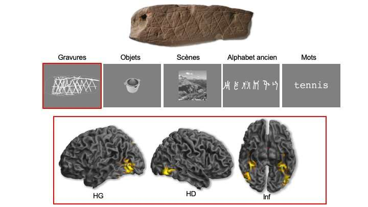 **Neurosciences unlock the secret of the first abstract engravings