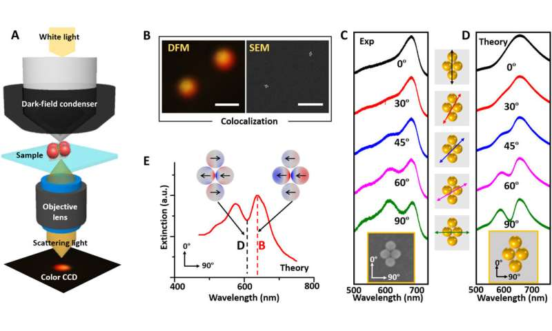 Quantizing single-molecule surface enhanced Raman Scattering with DNA origami metamolecules