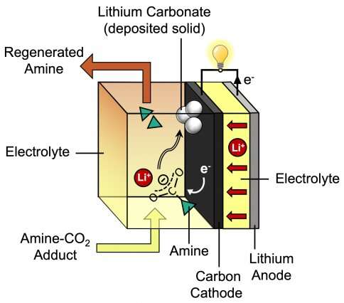Removing carbon dioxide from power plant exhaust