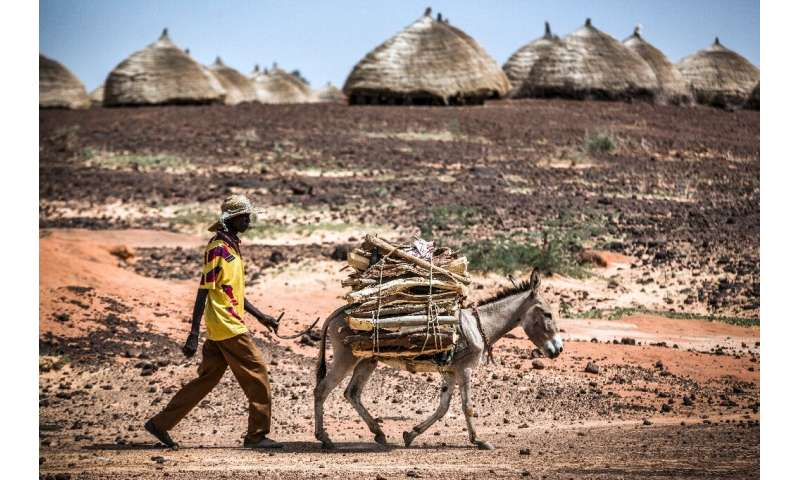 Rising temperatures in the African Sahel have caused prolonged drought and unpredictable weather patterns, exacerbating food sho