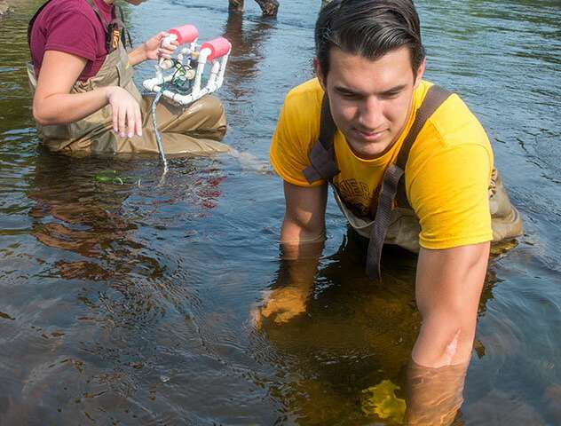 Soaking up clues from freshwater sponges