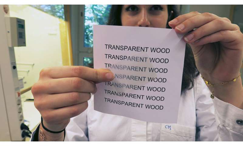 Transparent wood: the building material of the future?