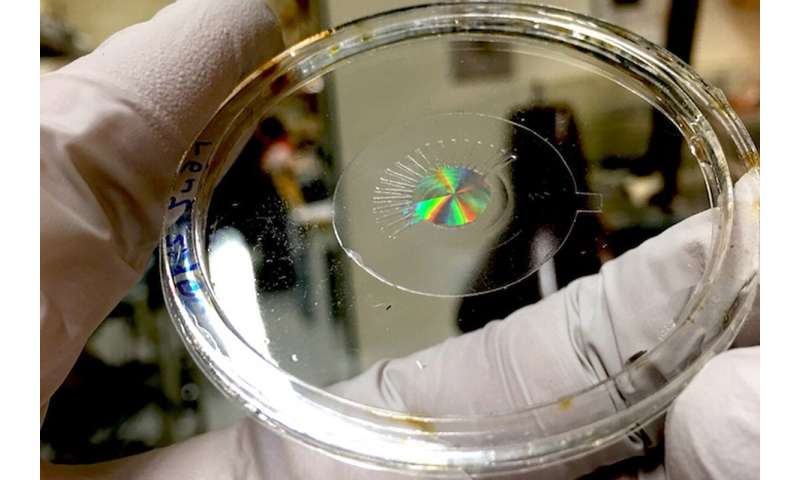 Breakthroughs seen in artificial eye and muscle technology