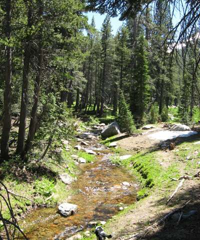 Climate change and drought threaten small mountain streams in the Sierra Nevada