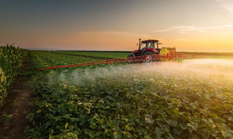 3 ways insecticides can be counterproductive in agriculture