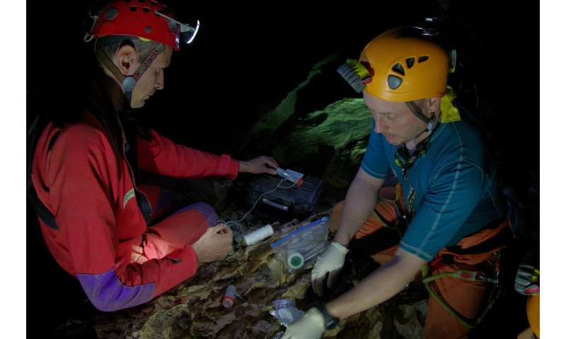 Astronaut trainees discover new crustacean species in cave training course