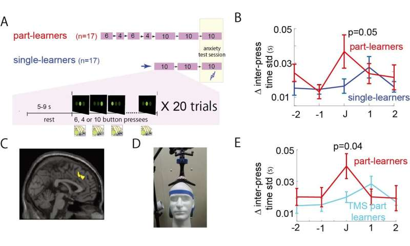 Brain stimulation prevents anxiety-induced decrease in motor performances