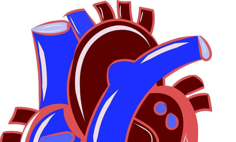CVD leading cause of death worldwide, but cancer rising