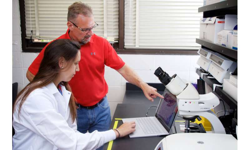Clemson researchers tie metabolic enzyme to obesity and fatty liver disease