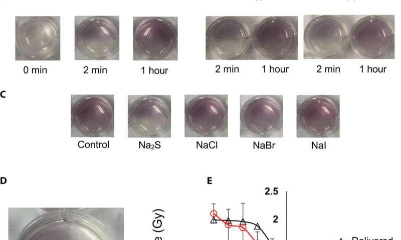 Determining topographical radiation dose profiles using gel nanosensors