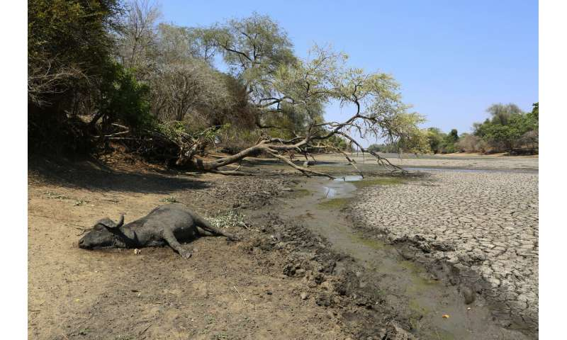 Drought parches southern Africa, millions faced with hunger