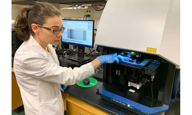 Un test sanguin expérimental détecte avec précision la fibromyalgie