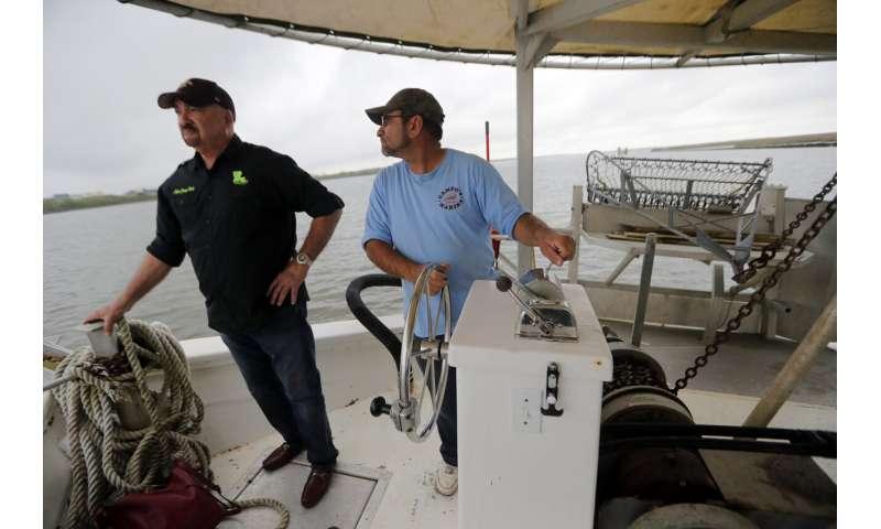 Louisiana hopes to fight coast erosion by mimicking nature