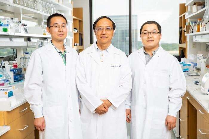 Manipulating dose, timing of two therapies reduces relapse in mouse models of breast cancer