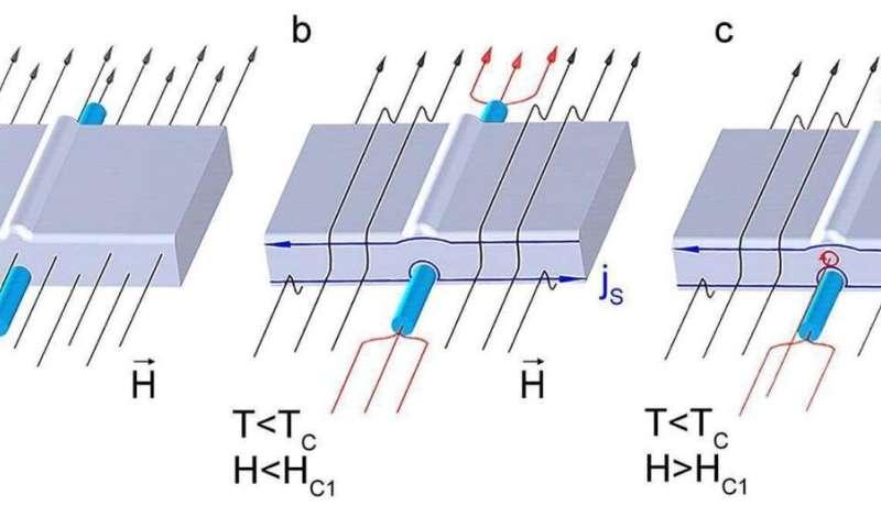 Nanowire detects Abrikosov vortices