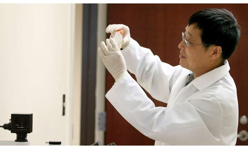New therapeutic target for graft-vs-host disease could make bone marrow transplant safer