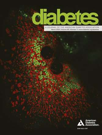 Researchers gain insights into cellular processes associated with diabetes