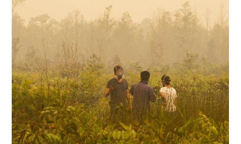 Satellites reveal peatland fire susceptibility