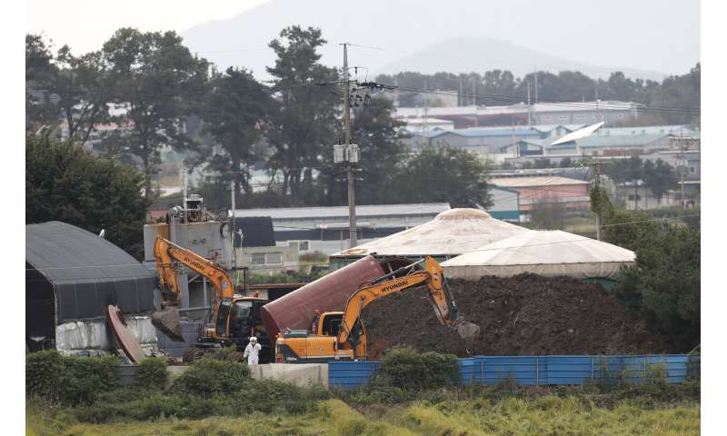 South Korea confirms 2nd case of African swine fever