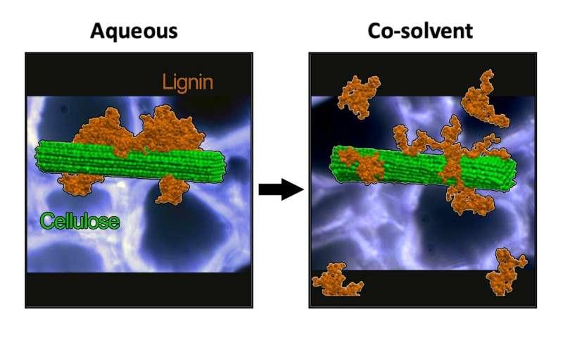 Supercomputing improves biomass fuel conversion