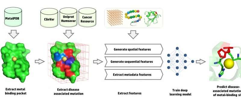 Using deep learning to predict disease-associated mutations