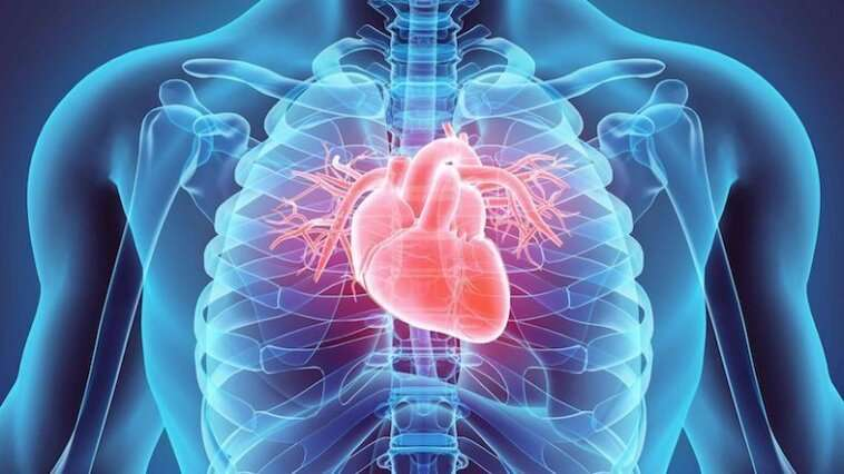 Using machine learning to estimate risk of cardiovascular death