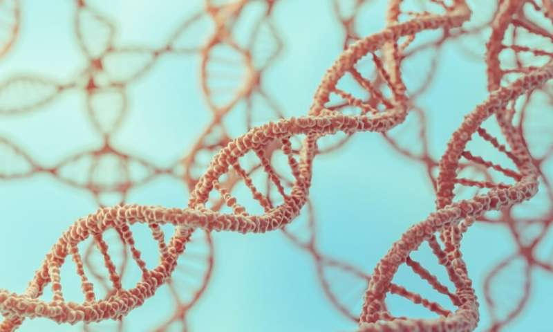 Understanding the role of a little known gene in regulating metabolism