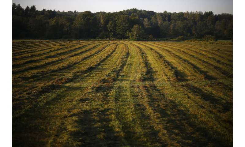 Concerns grow over tainted sewage sludge spread on croplands