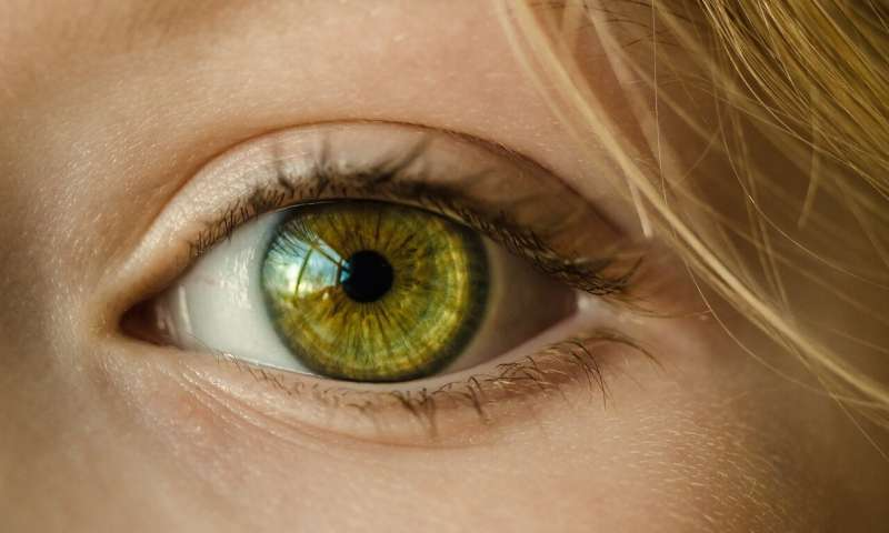 AI to bring sharper focus to eye testing
