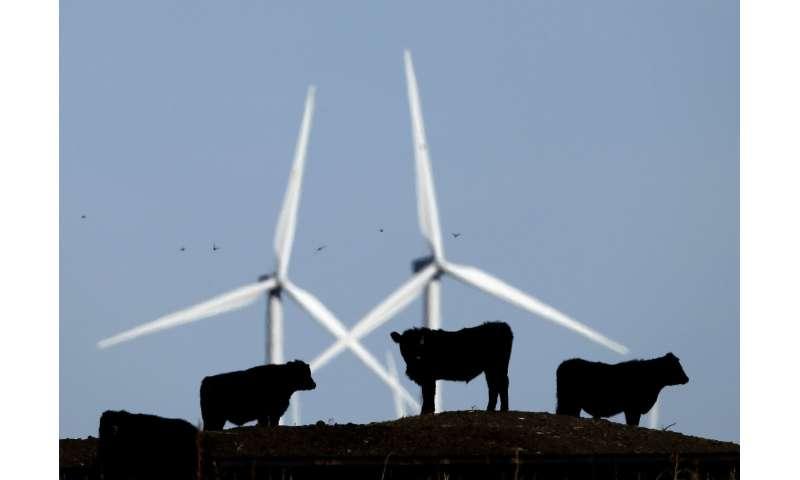 Poll: Energy-saving habits vary in popularity