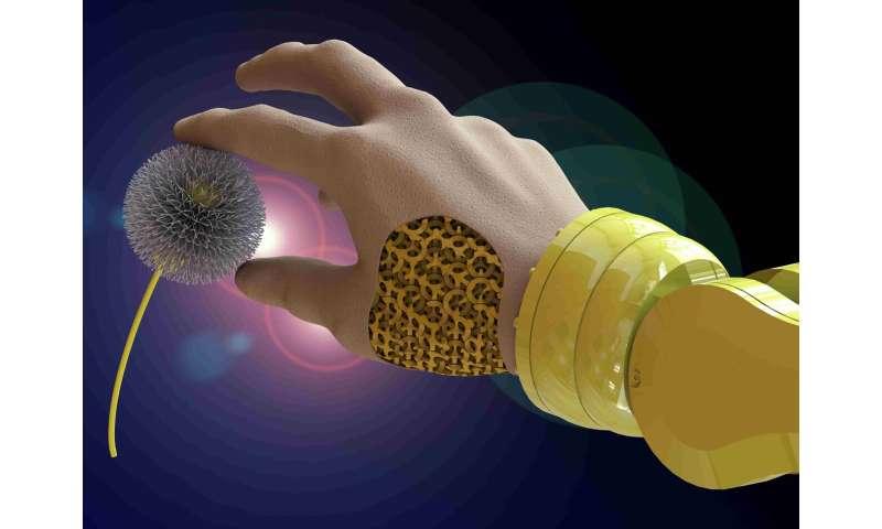 Programmable soft actuators show the great potential of soft roboticsResearchers at TU De