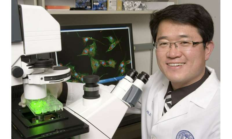 Researchers aiming to cure spina bifida get a step closer to their goal