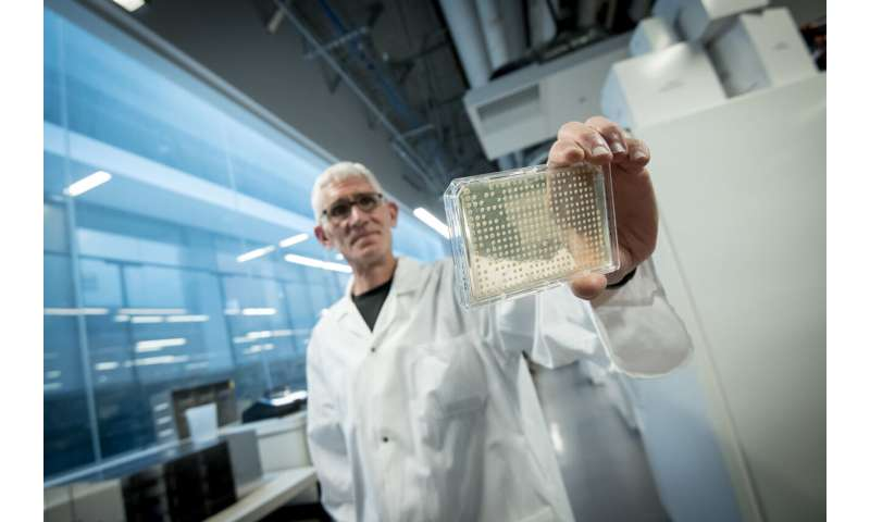 Researcher studies yeast to protect astronauts from space radiation