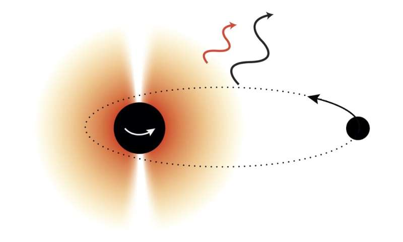 Discovering new particles using black holes