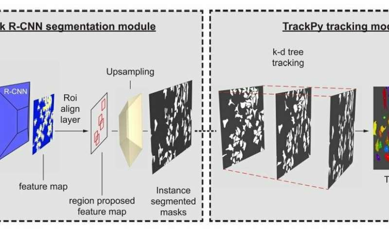 Machine learning tracks moving cells