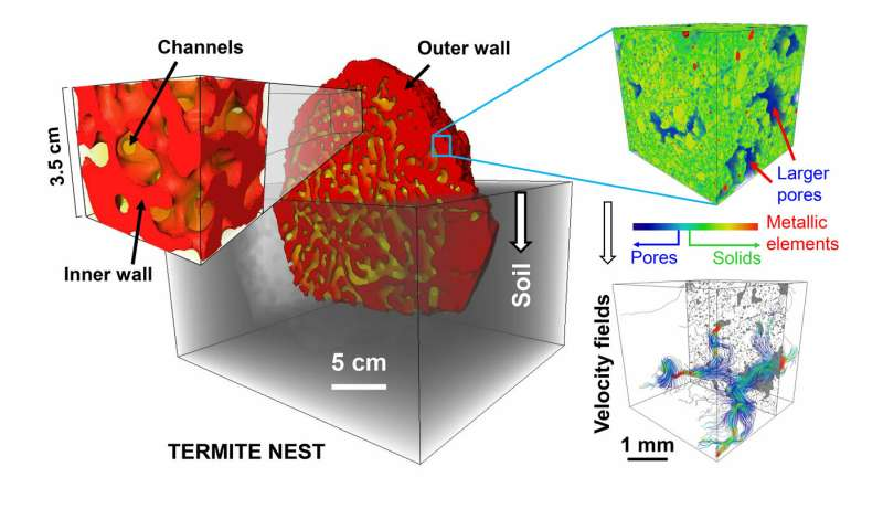 X-rays reveal termites' self-cooling, self-ventilating, self-draining skyscrapers