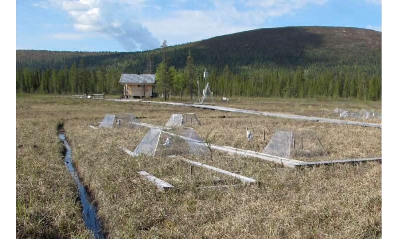 Climate change impacts peatland CO2 gas exchange primarily via moisture conditions