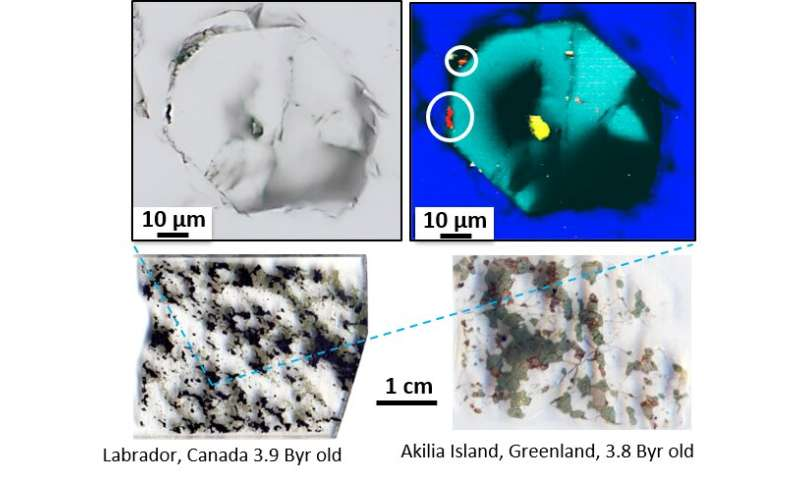 Tracking records of the oldest life forms on Earth