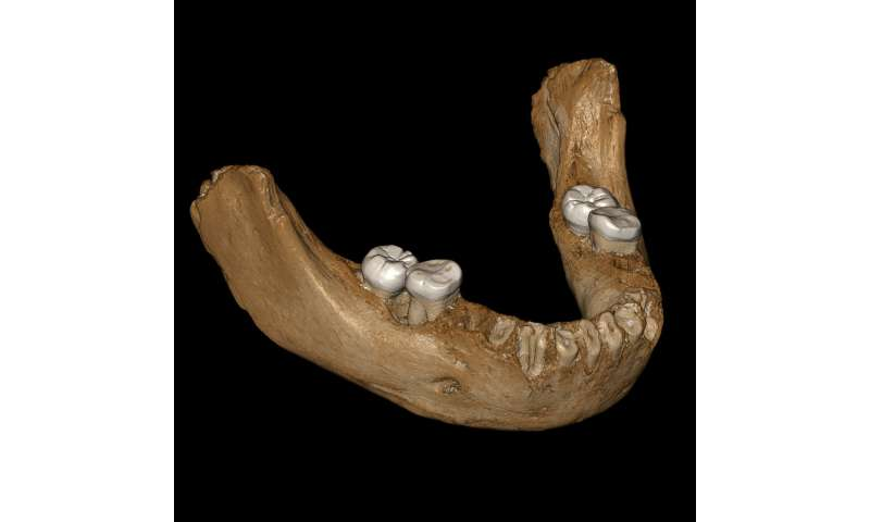 First hominins on the Tibetan Plateau were Denisovans
